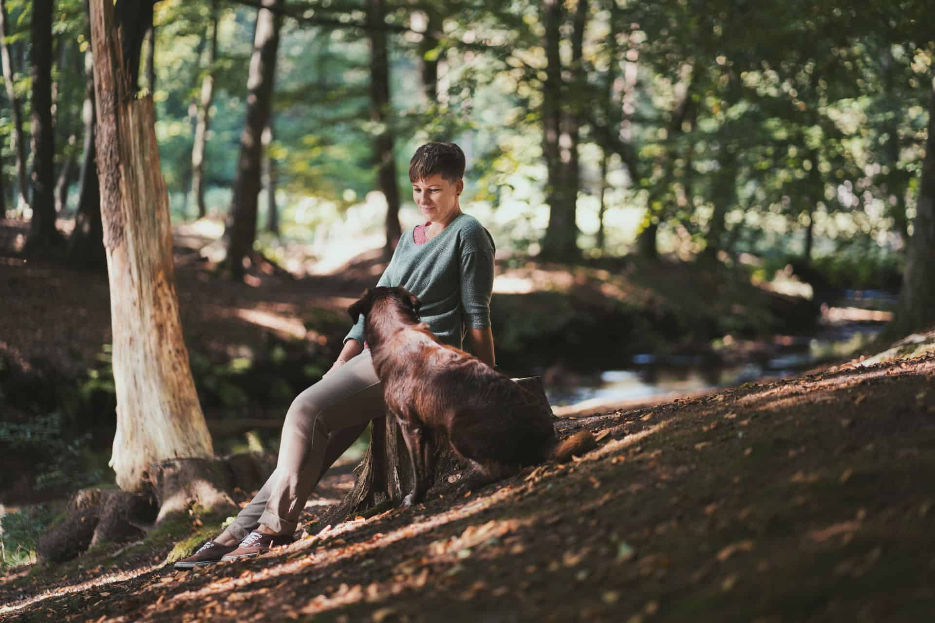 hunde fotograf in verden - Anna Lorek Fotografie