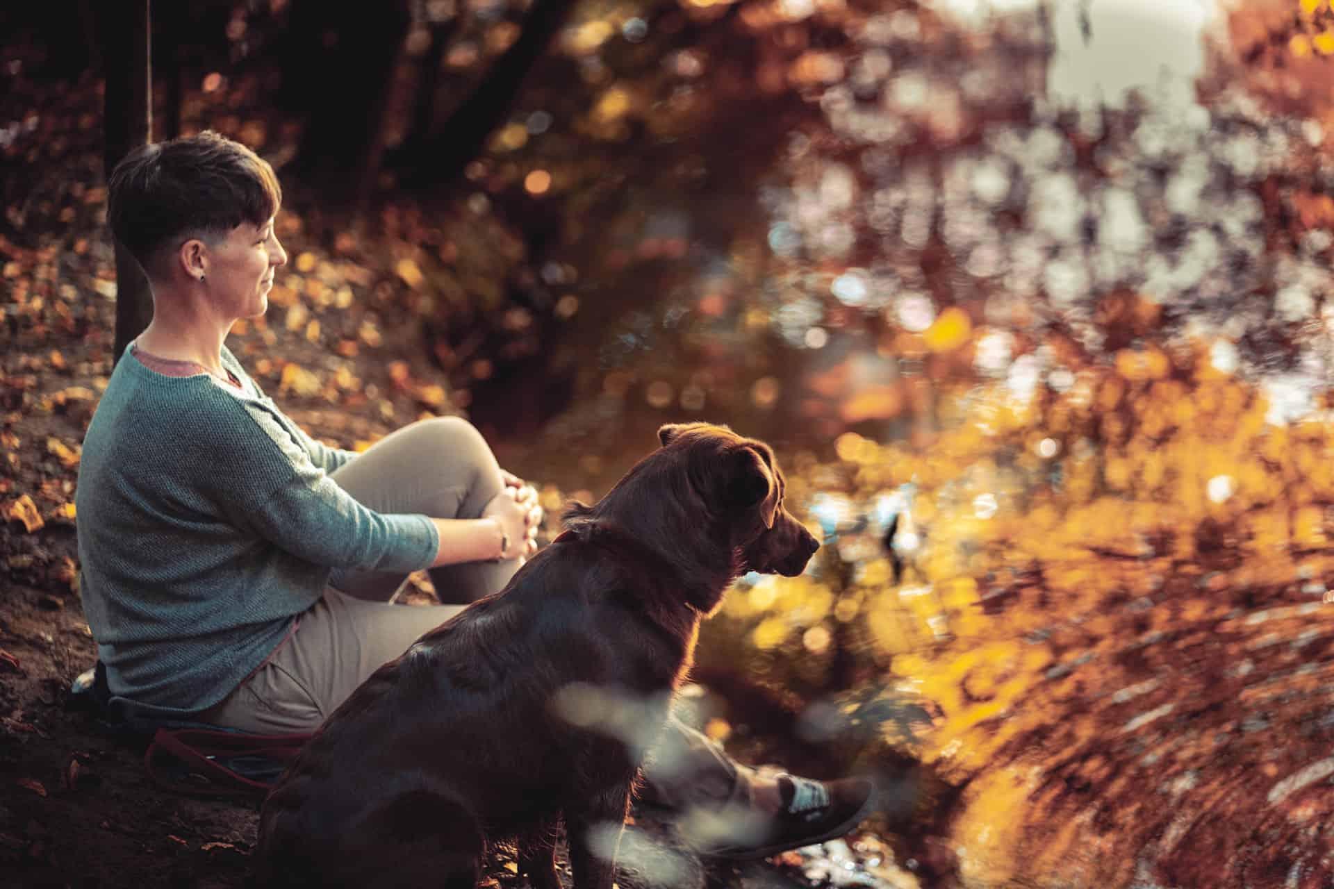 tierfotos hunde in verden - Anna Lorek Fotografie